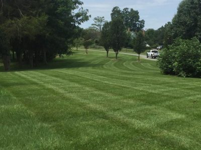 freshly cut lawn with criss cut pattern