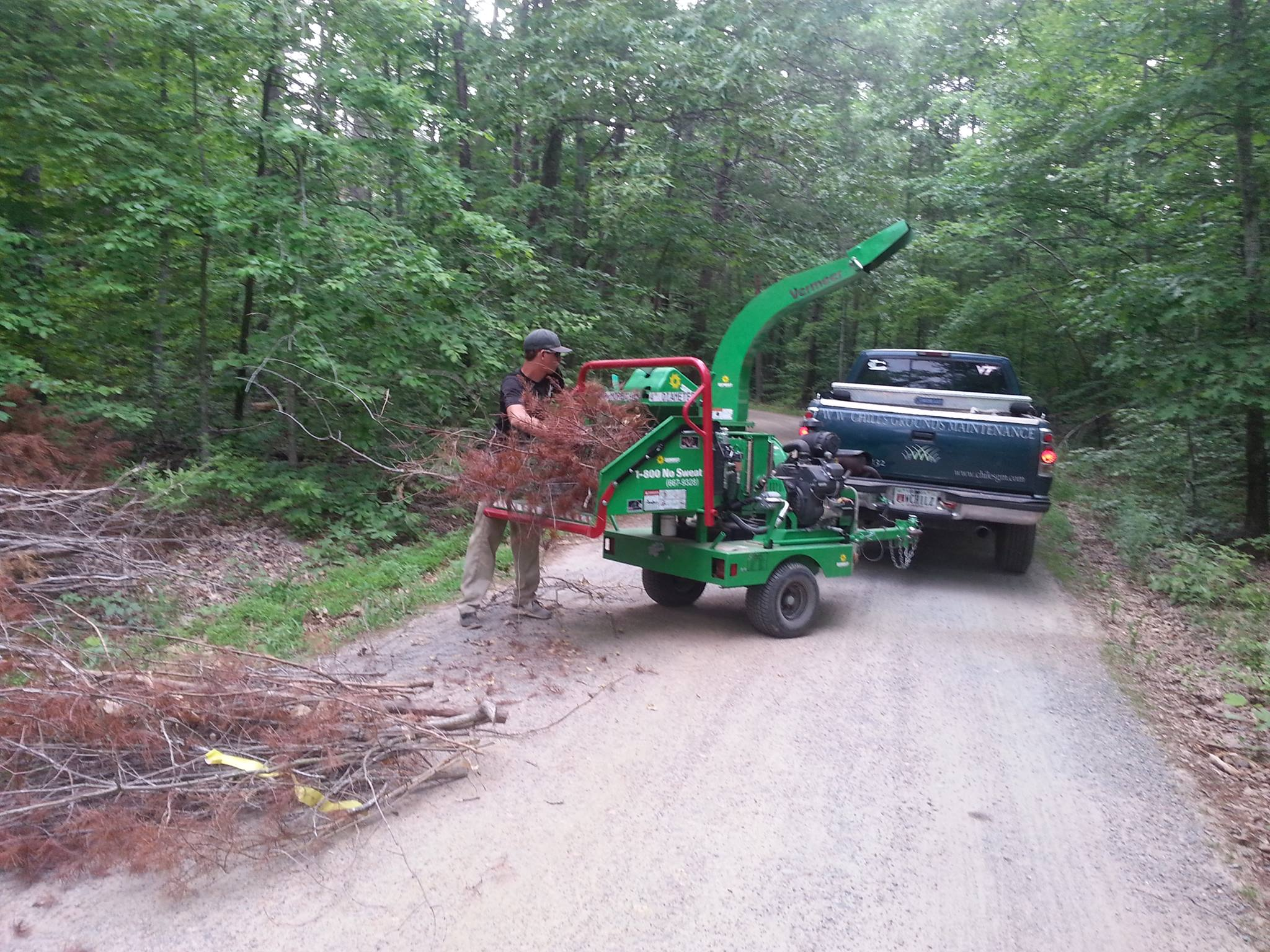 tree care professional pushing tree limbs into a wood chipper