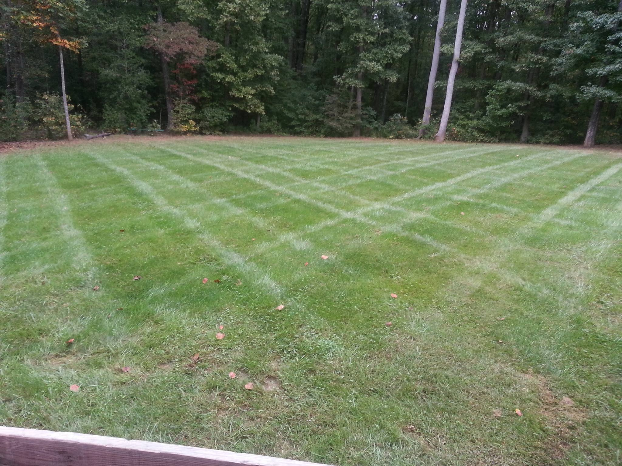 freshly mowed lawn with a criss cut pattern
