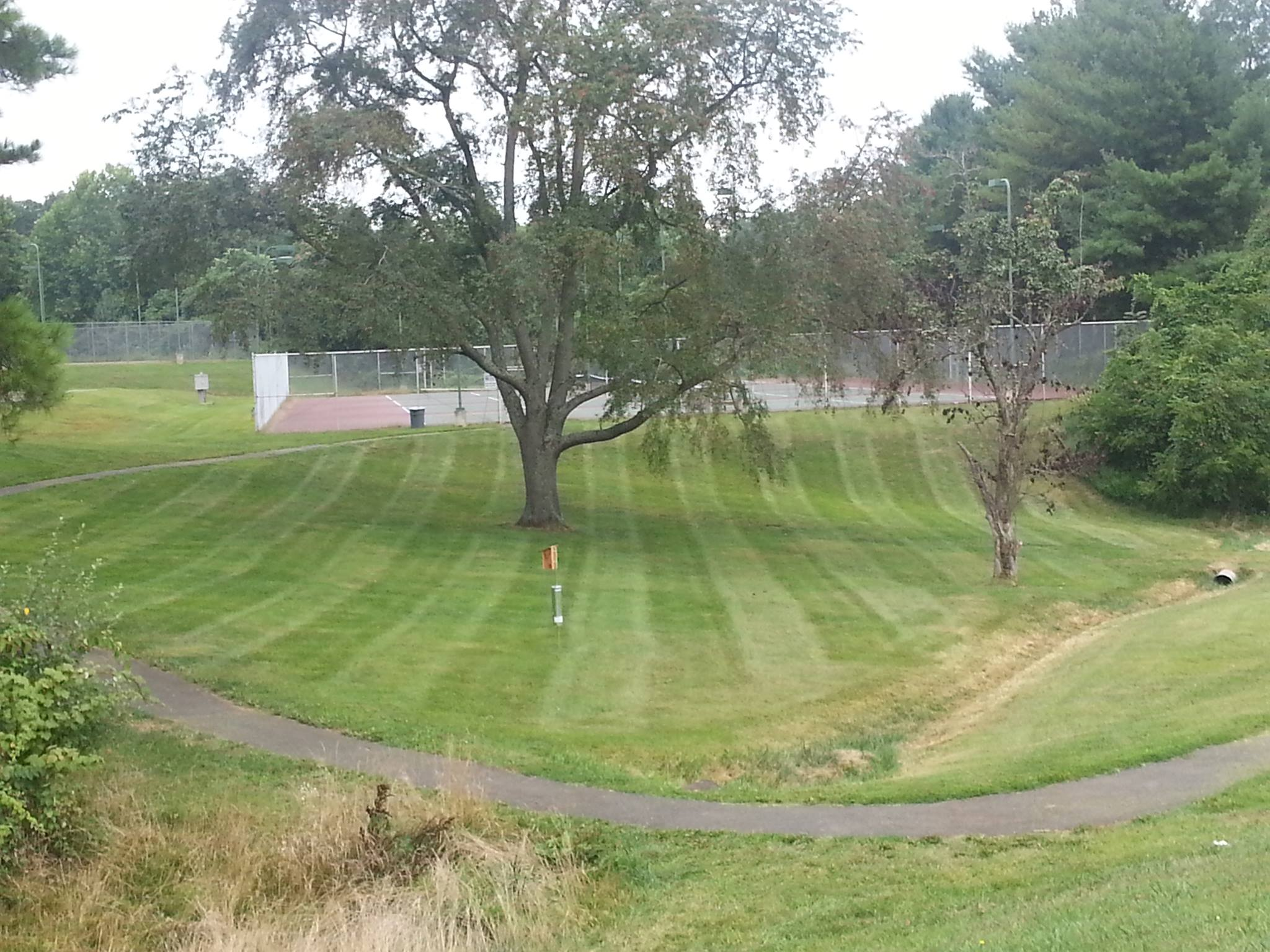 freshly mowed lawn in a park with tennis courts in the background